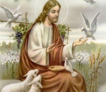 Alla bellezza di Cristo Creatore